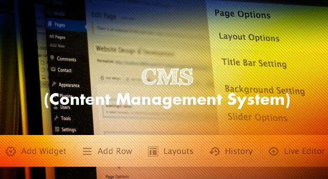 cms-content management system