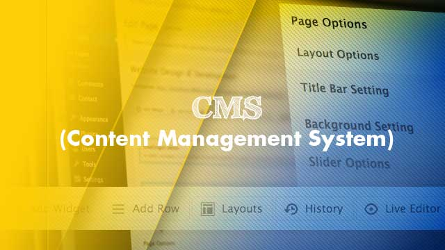 Content Management System, WordPress