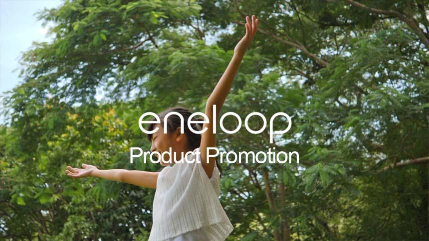 Panasonic Eneloop Product